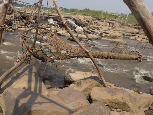 Congo River Cruise 15