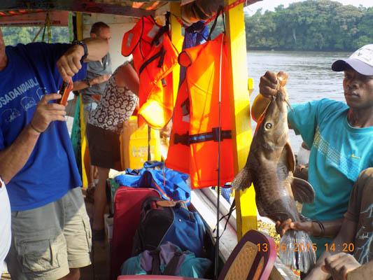 Congo River Cruise 35