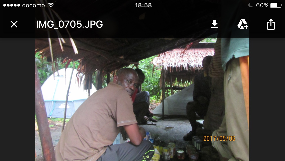 Lake Tele Expedition - Congo Travel and Tours